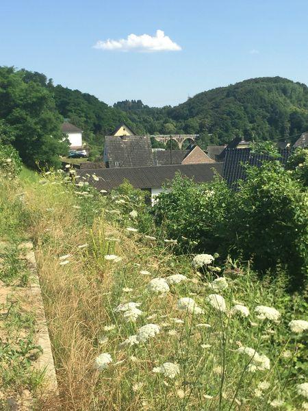 Viadukt der Kasbachtalbahn im Kasbachtal