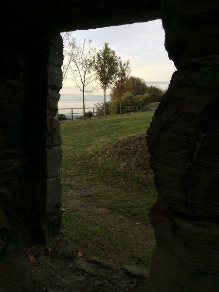 Tür Burg Landskron