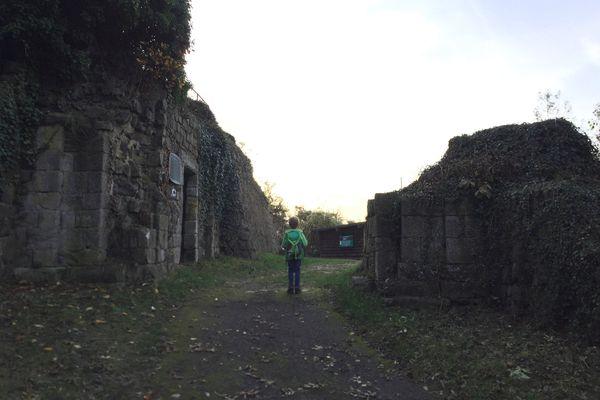 Eingang Burg Landskron