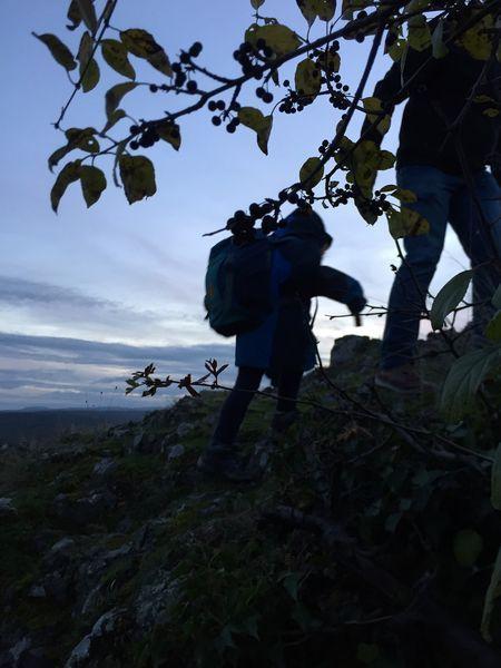 Aufstieg Felsen vor Landskrone, Bad Neuenahr