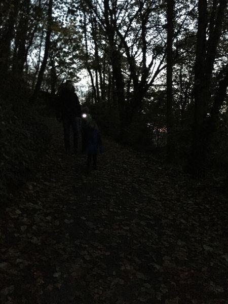 Nachtwanderung Landskrone, Bad Neuenahr