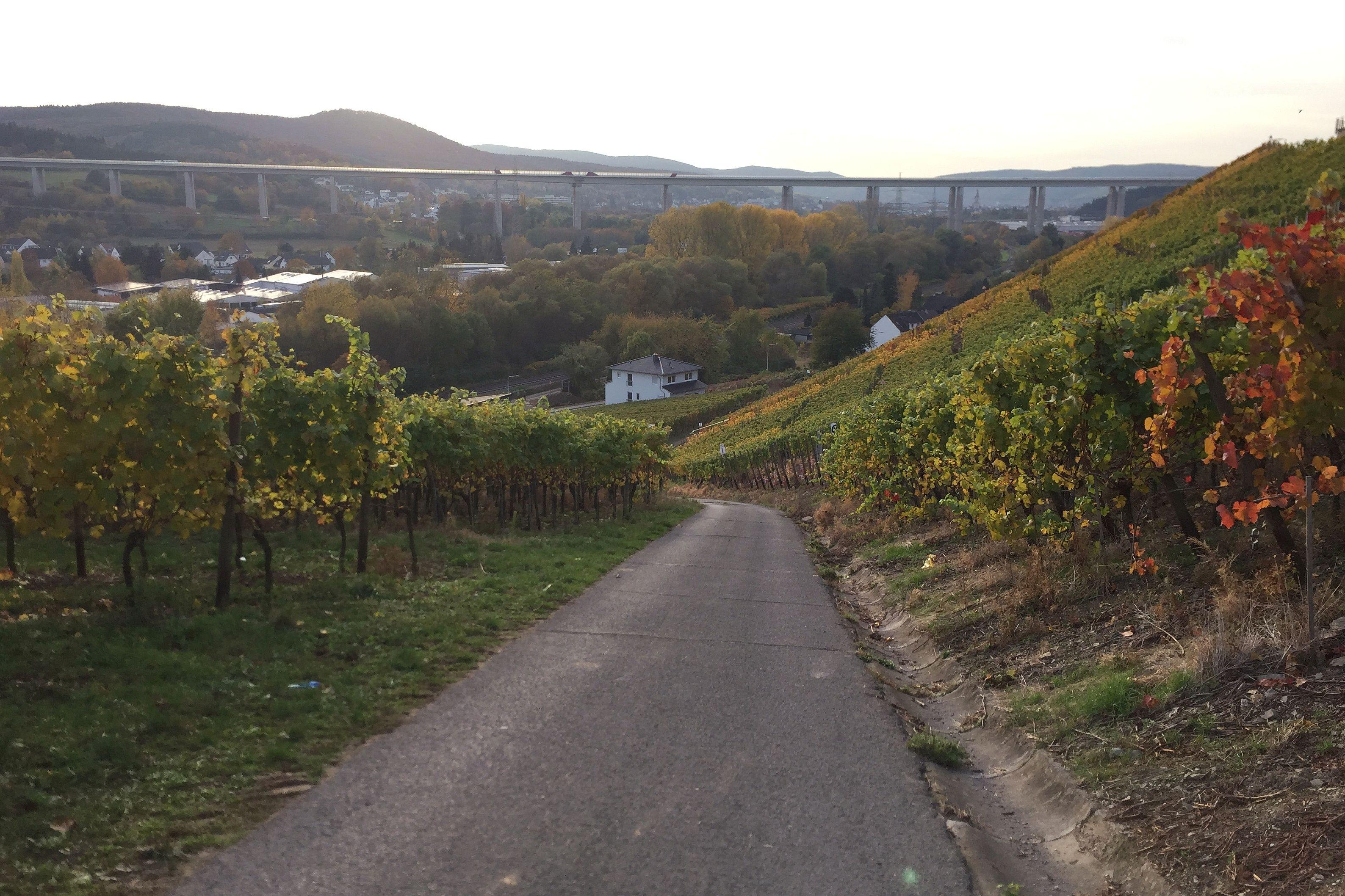 Autobahnbrücke über das Ahrtal, Blick Richtung Eifel