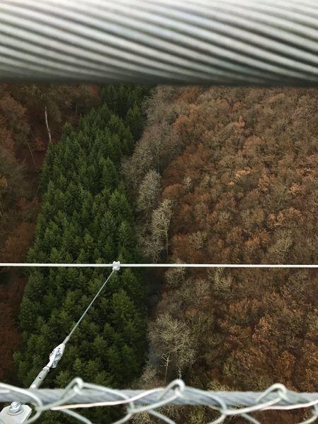 Schlucht Hängebrücke Geierlay