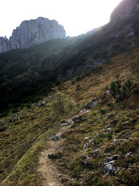 Wandern an der Kampenwand, Pfad mit Markierung zum Ostgrat