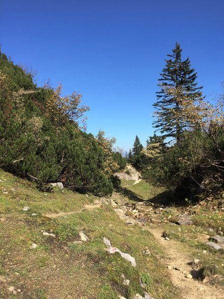Wandern an der Kampenwand, Ostumrundung